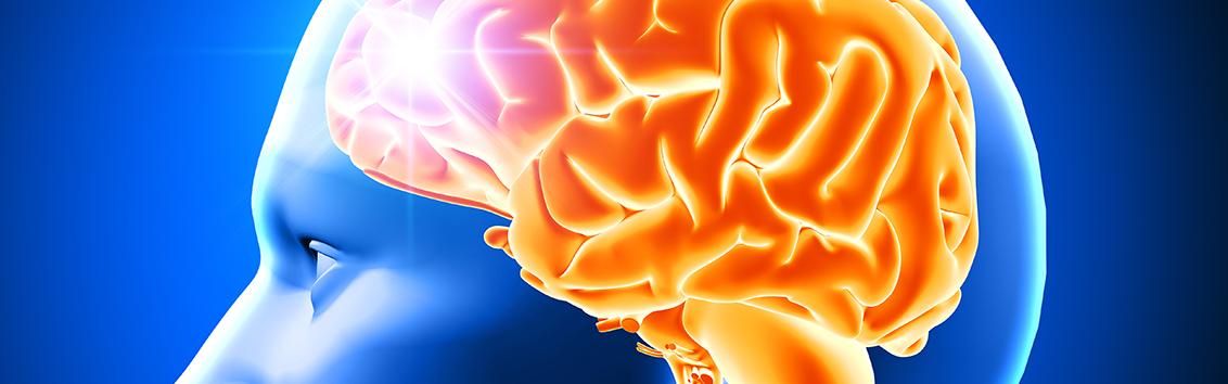 Что показывает компьютерная томография головного мозга? показания и противопоказания кт головного мозга.