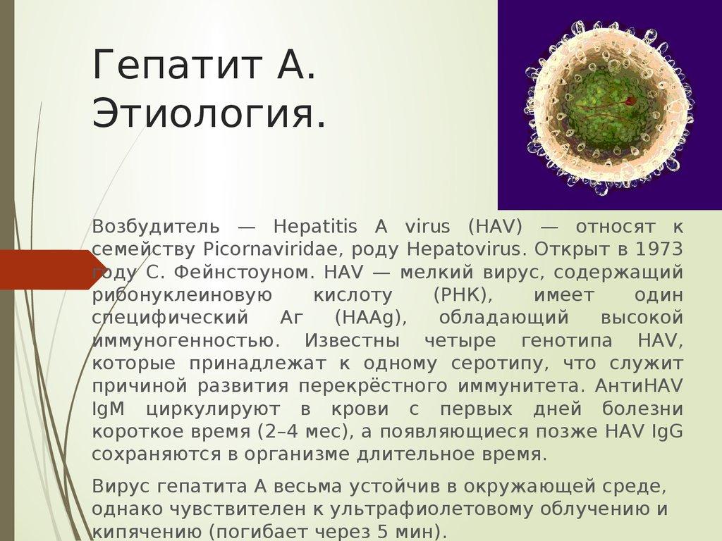 Вирусный гепатит с: симптомы. как передается болезнь: 5 путей для инфекции. гепатит в симптомы как передается