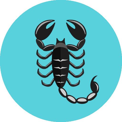 Скорпион – описание, виды, чем питается, где обитает, фото