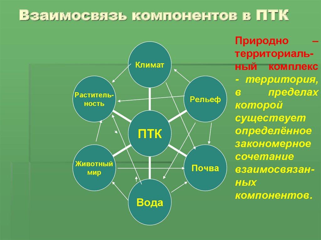Природный комплекс и его компоненты. разнообразие природных комплексов россии