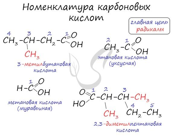 Физические, химические свойства и формула карбоновых кислот