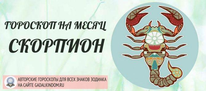 Скорпион | знак зодиака скорпион