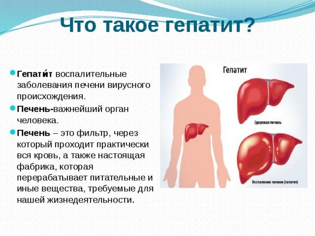 Вирусный гепатит с: симптомы, диагностика, лечение и профилактика