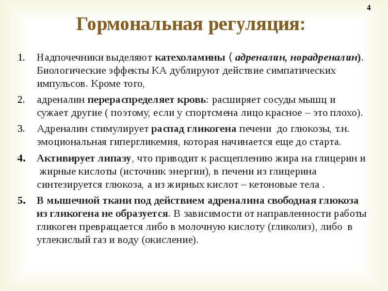 Катехоламины википедия