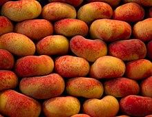 Инжирный персик - польза, калорийность, описание основных сортов