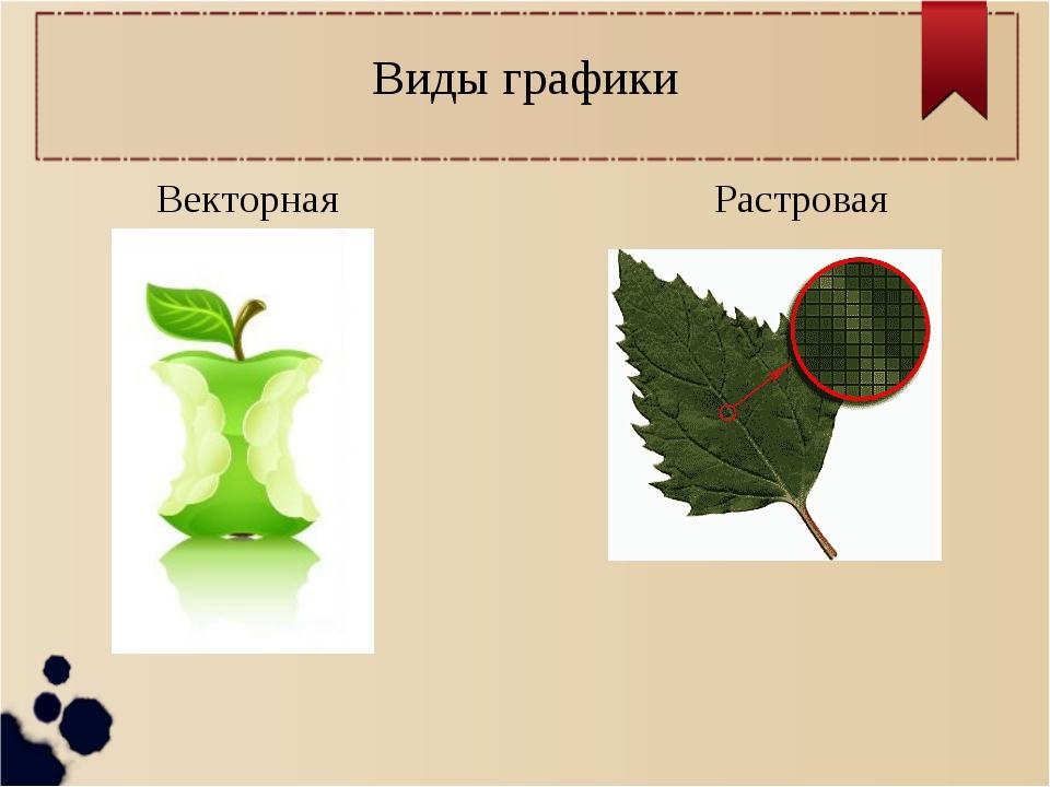 Понятие растровой и векторной графики | это госы! wiki | fandom