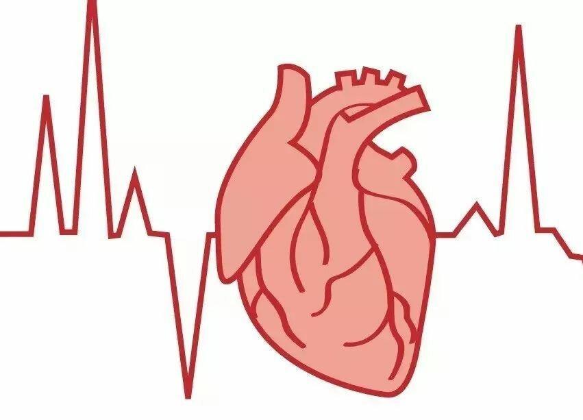 Аритмия сердца: лечение, симптомы и причины развития
