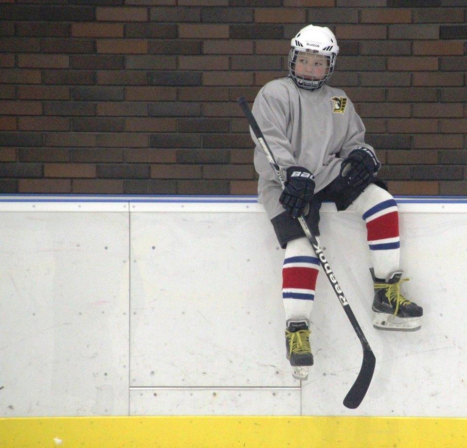 Что такое хоккей и каковы правила игры. что такое хоккей на льду и чем он отличается от хоккея на траве