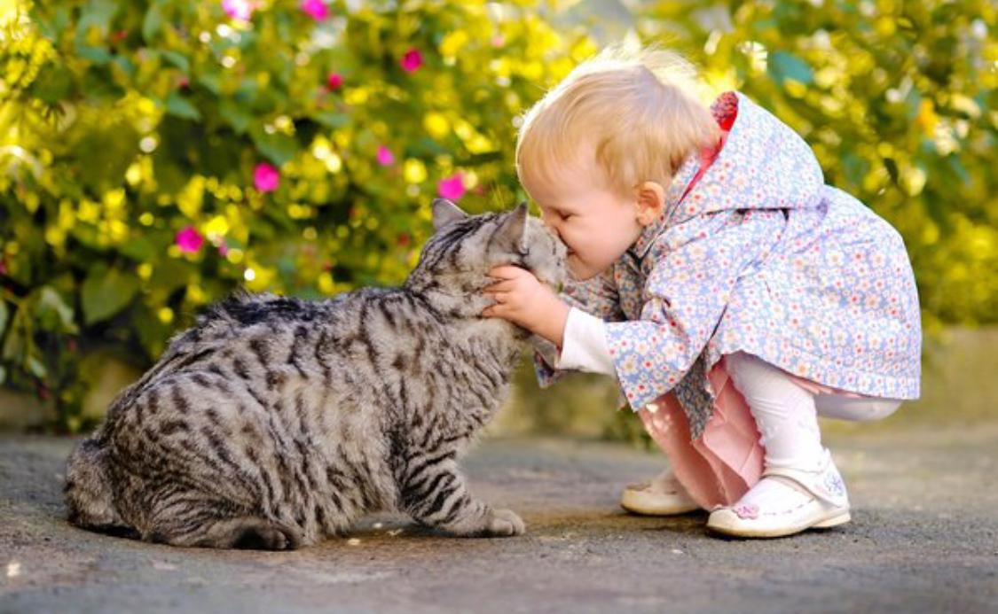 Что такое доброта и легко ли быть добрым сегодня