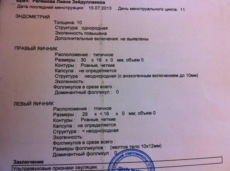 Желтое тело на узи - что это значит? :: syl.ru