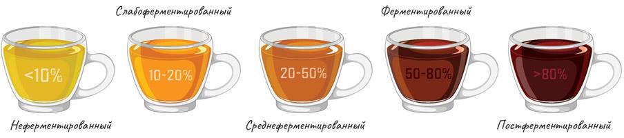 Ферментированные овощи: как приготовить дома, рецепты : польза и вред ::  jivilife.ru