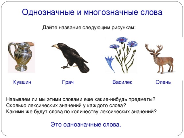 Многозначные слова – примеры двух или нескольких значений в русском языке, определение многозначности (2 класс)