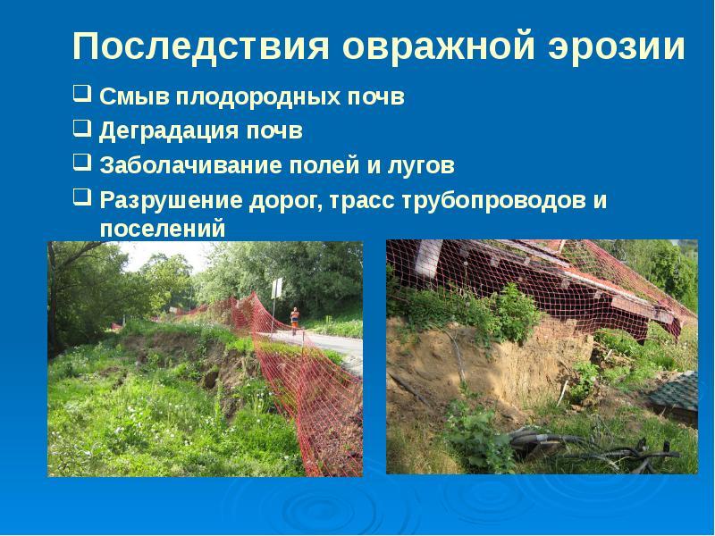 Эрозия почв: причины, виды, последствия, методы предотвращения