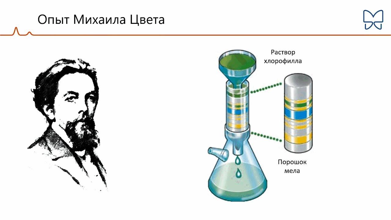 Жидкостная хроматография   авторская платформа pandia.ru