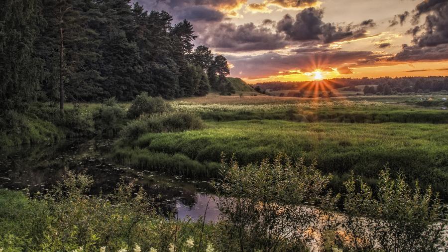Короткие фразы, афоризмы, цитаты и высказывания про лето