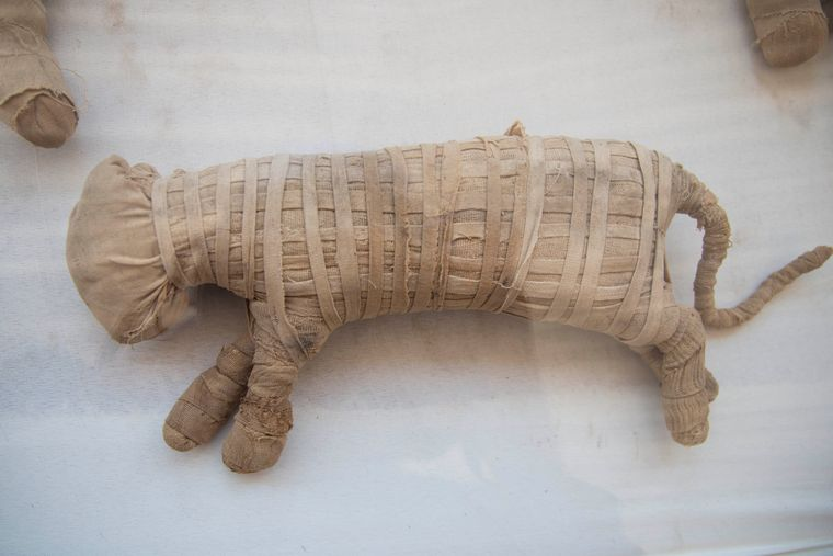 Интересные факты о мумиях (кто делал из них лекарство и зачем)