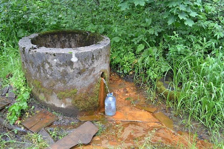 Ключевая беда: чистота родниковой воды оказалась мифом