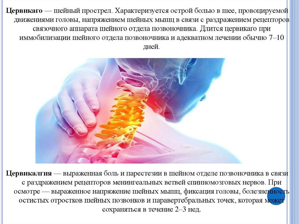 Цервикалгия шейного отдела позвоночника: лечение, симптомы, причины | мрикрнц.рф
