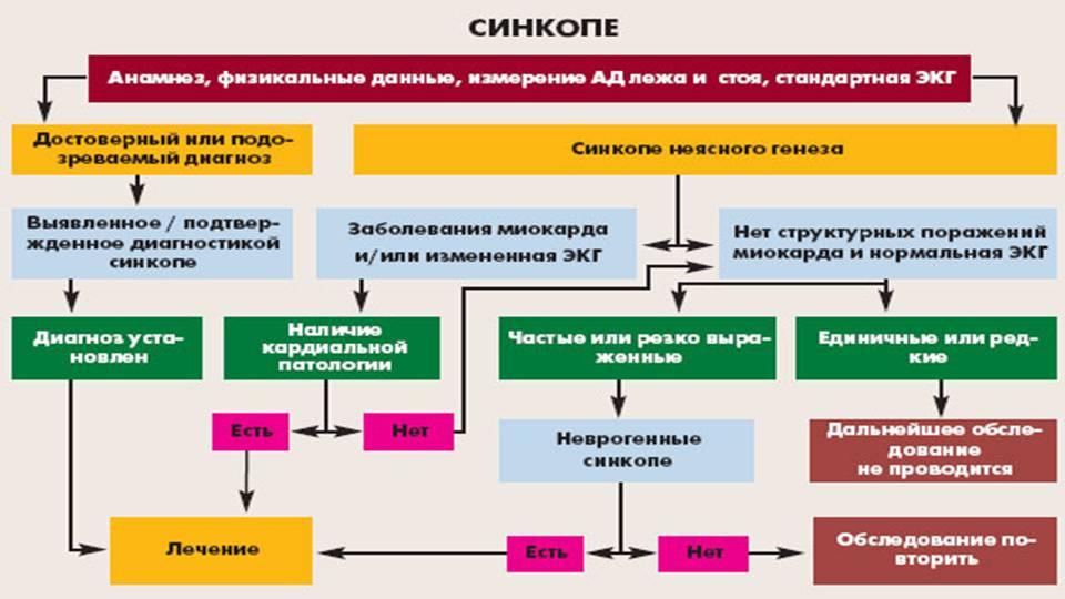 Синкопальные состояния - медицинский портал «health-ua.org»