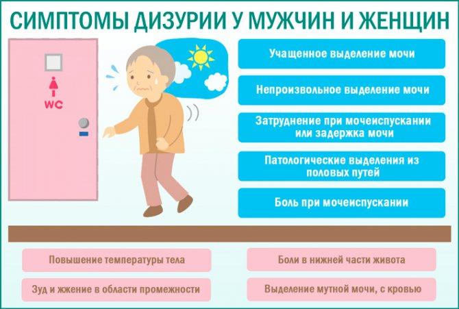Дизурия у женщин и мужчин: что это такое, виды, симптомы