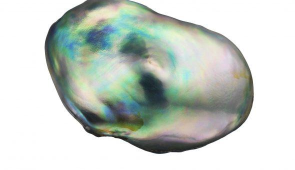 Перламутр (39 фото): что это такое? свойства камня. кому он подходит? описание белого и черного, зеленого и розового, жемчужного и других видов перламутра