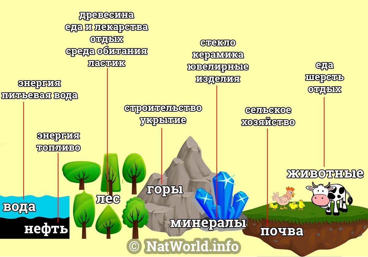Минеральные ресурсы россии: виды, экономическое значение и карта природных ископаемых