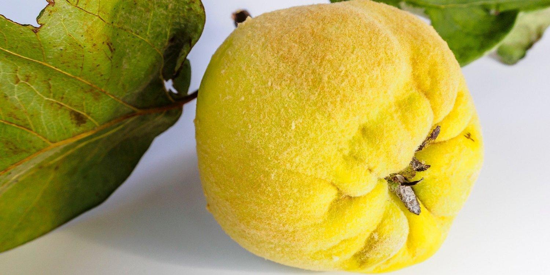 Яблоко что это за фрукт и чем он полезен для человека?