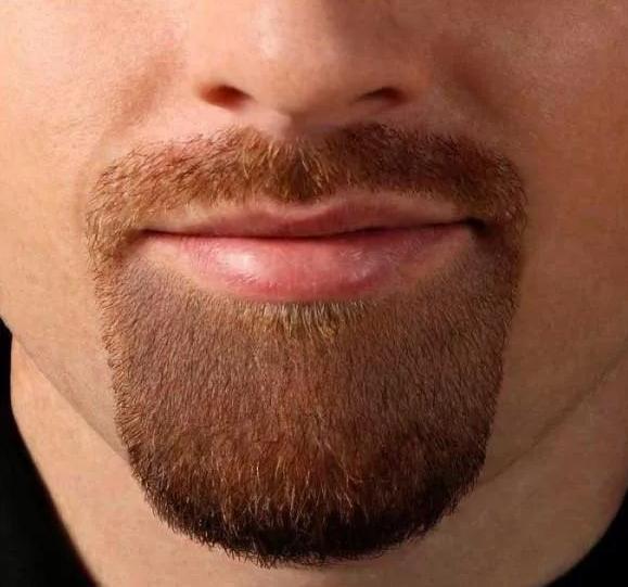Борода эспаньолка (испанская бородка)