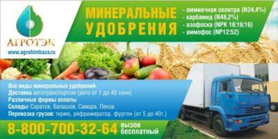 Удобрение нитрофоска: применение на огороде, состав, внесение осенью для картофеля - почва.нет
