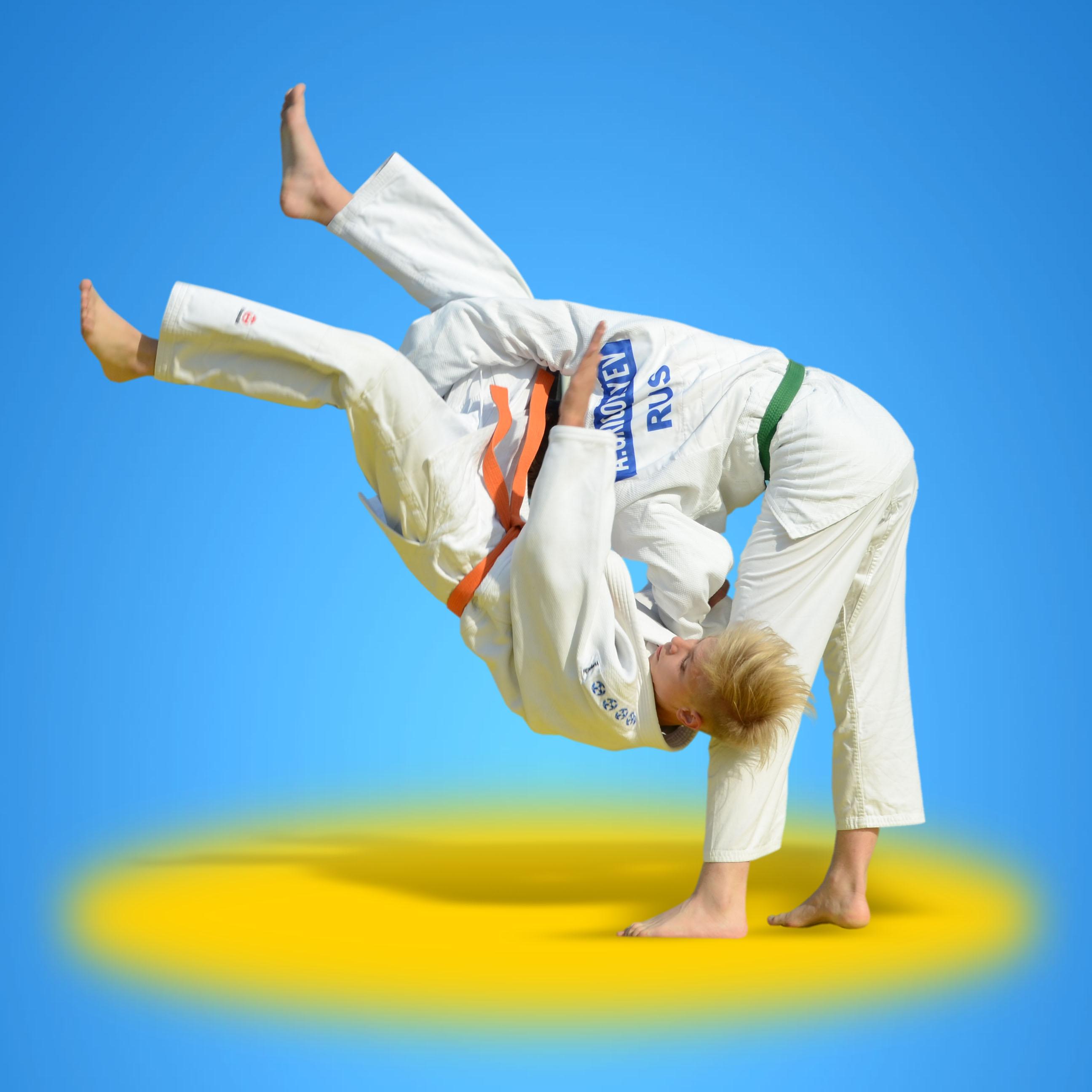 Айкидо что это за вид спорта: особенности, польза, развитие
