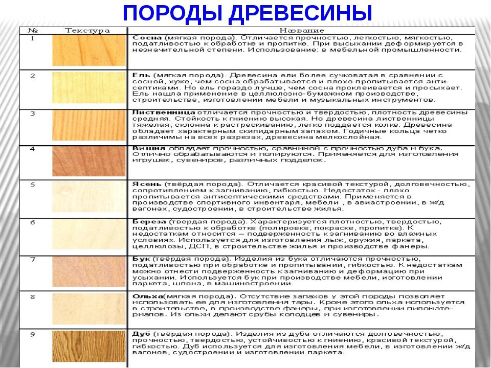 Виды древесины, их физико-механические свойства, характеристики отдельных пород