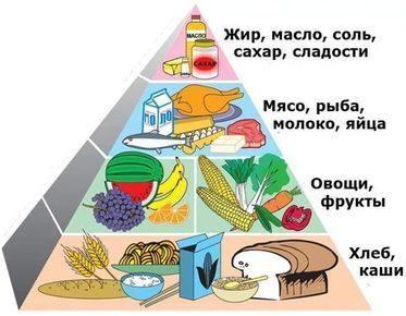Рациональное питание – что такое. как правильно питаться и основные положения