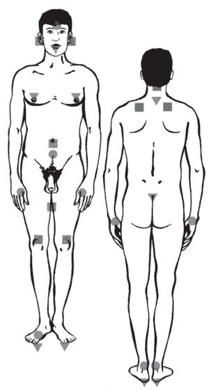 Как найти эрогенные зоны на теле мужчины?