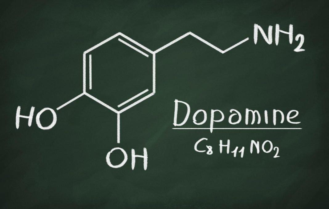 Дофамин. что это такое?
