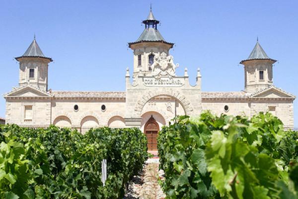 Вино шато - благородный напиток с многолетней историей