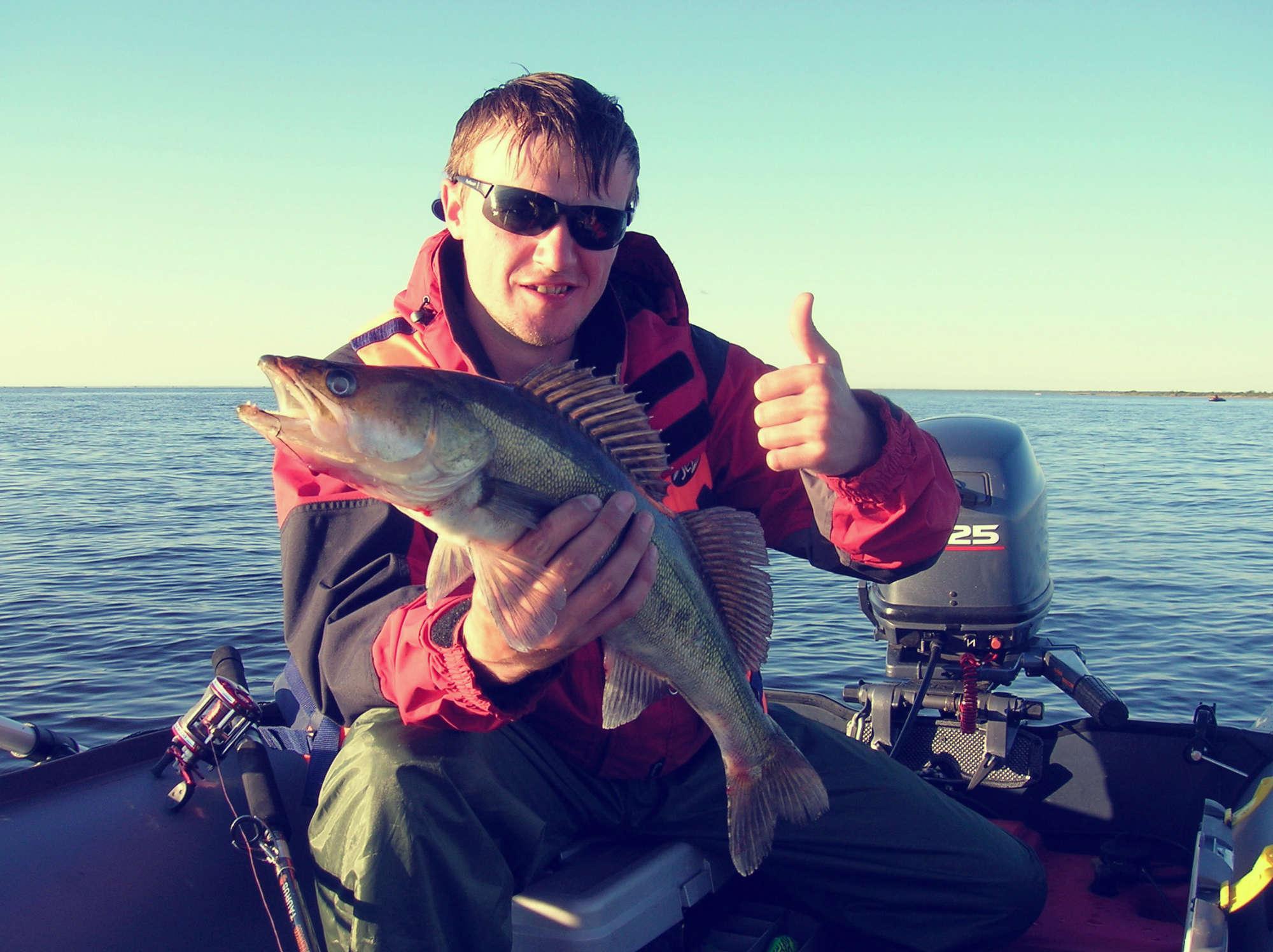 Что такое эхолот. принцип работы и данные. фото - fishing world
