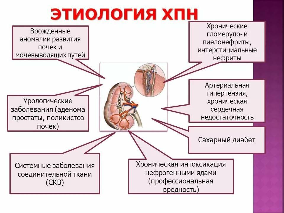 Почечная недостаточность. причины, симптомы, признаки, диагностика и лечение патологии. :: polismed.com