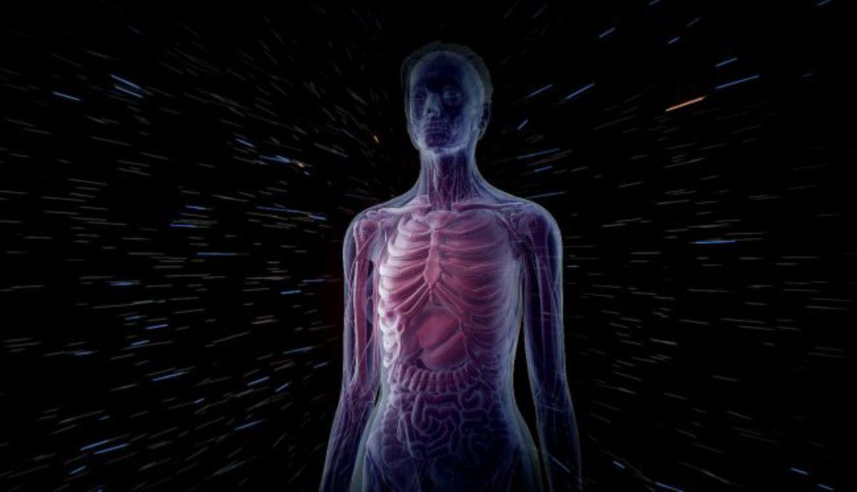 Пересборка наших границ: как табу, фотография ибиомедицинское знание создают людские тела