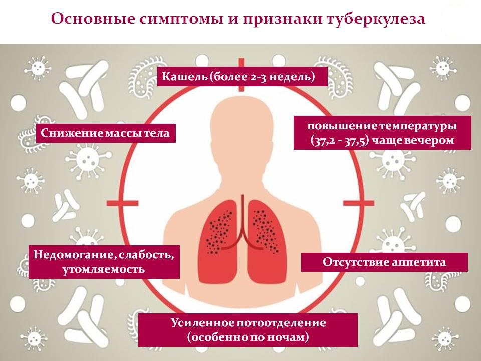 Туберкулез - что это такое? причины и лечение!