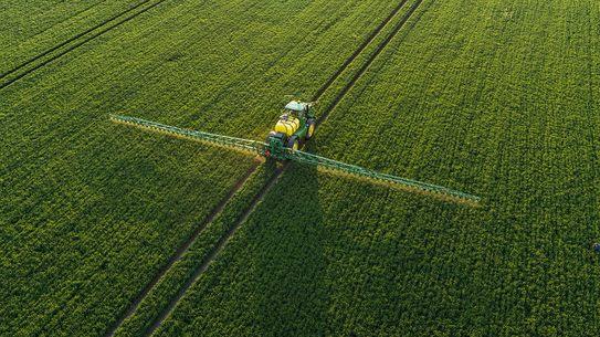 Характеристики отраслей растениеводства в россии — cельхозпортал