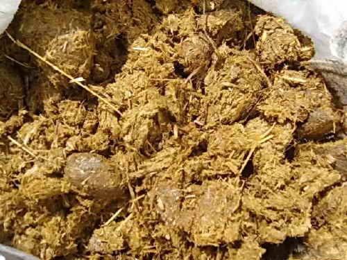 Навоз — основные виды и правила внесения удобрения в почву