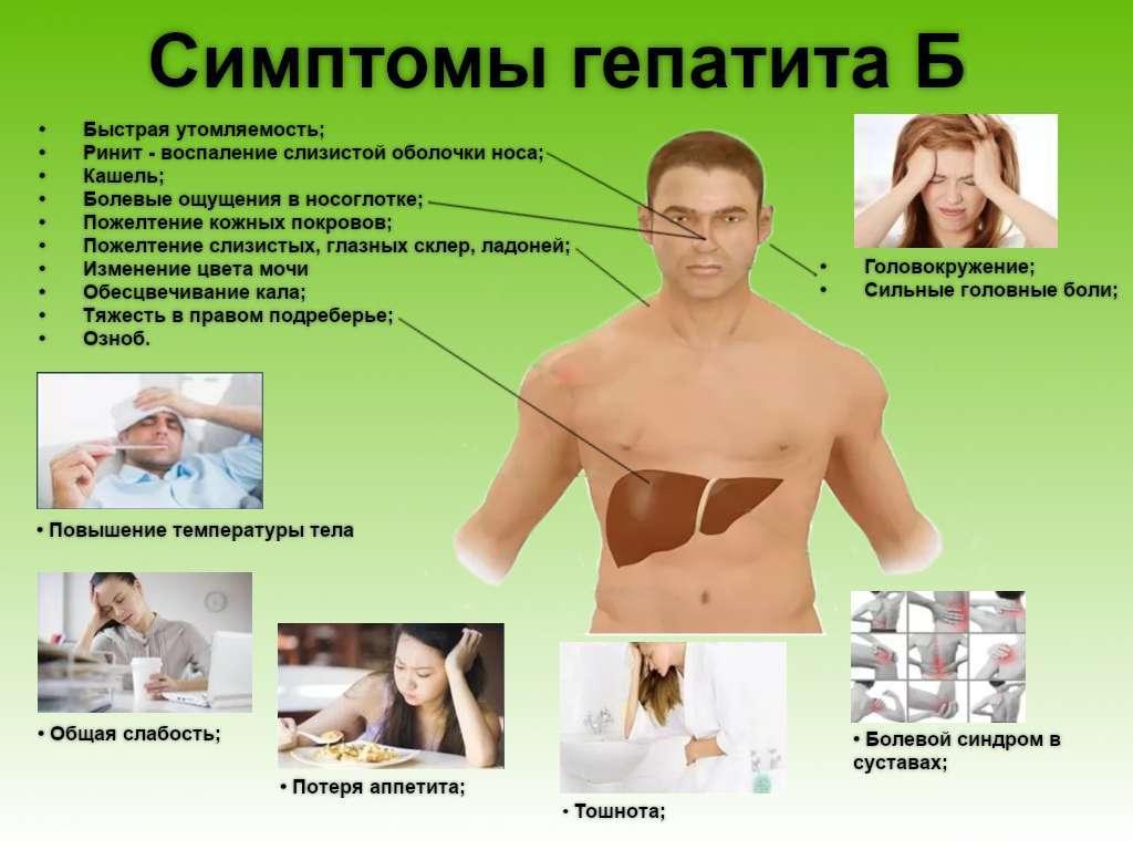 Гепатит б что это за болезнь - всё о печени