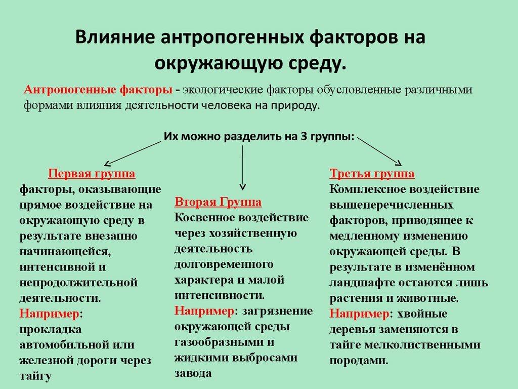 Антропогенные опасности - это... понятие, примеры и причины возникновения антропогенных опасностей