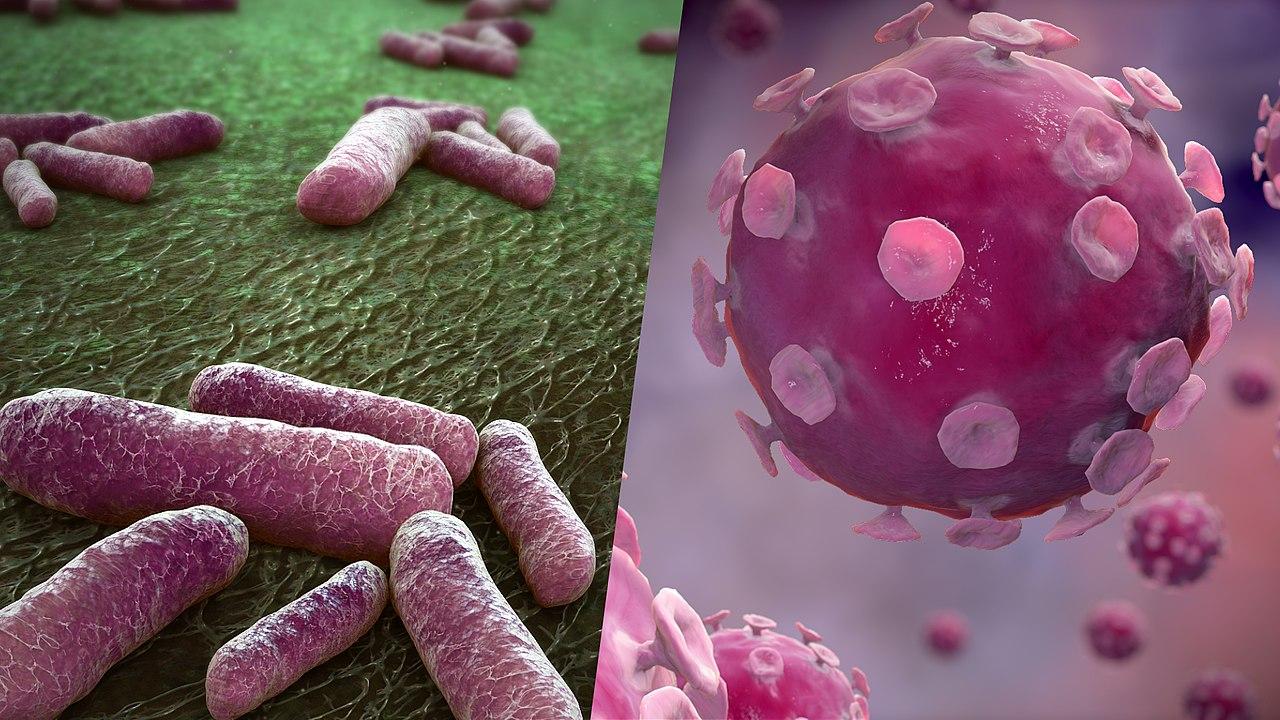 Цитомегаловирус - что это такое и как лечить