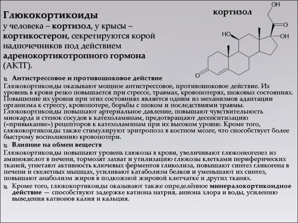 Катехоламины: что это такое, действие
