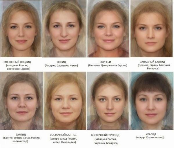 Связь между фенотипом и генотипом человека: их сходства и различия