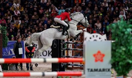 Зрелищные конные состязания: история развития конкура