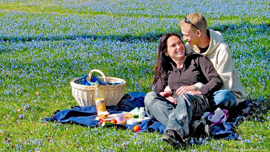 В городе и на природе: как устроить летний пикник без усилий — российская газета