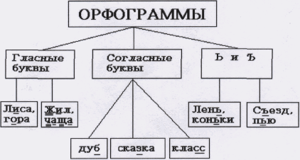Что такое орфограммы?. понятие об орфограммах. в статье рассказывается о том, что такое орфограммы, указываются их виды, даются примеры.