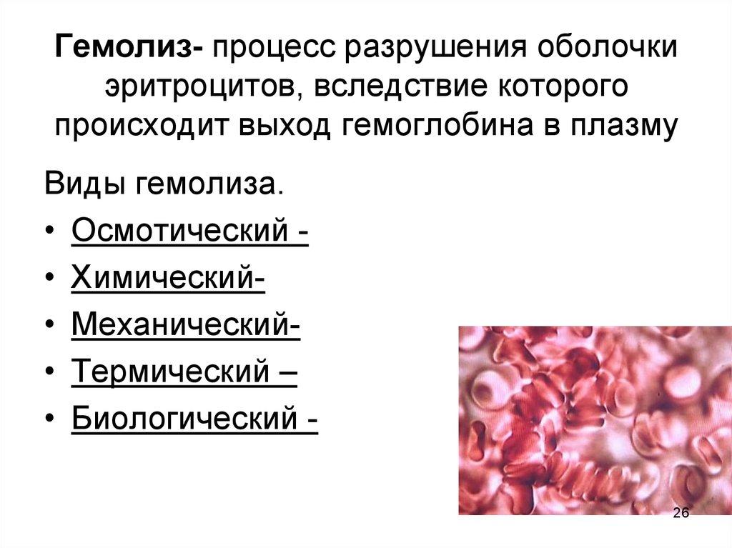 Гемолиз крови при сдаче анализов: что это такое, бывает ли при заборе из вены человека, при взбалтывании пробирки и при переливании, также по каким еще причинам?